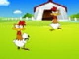 Play Crazy chickens