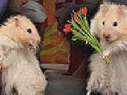 Play Cute mice slide puzzle