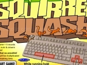 Play Squirrel squash