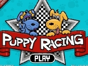 Play Puppy racong