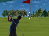Play Flashgolf