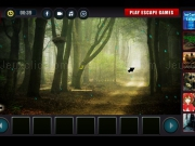 Play White Tiger Rescue Mystery